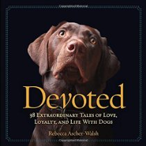 Devoted: 38 Extraordinary Tales of Love, Loyalty, and Life With DogsRead more at file:///Users/jodeekulp/Sites/TheChancerChronicles/index.html#pCYWYvdxFS3z9MXI.99